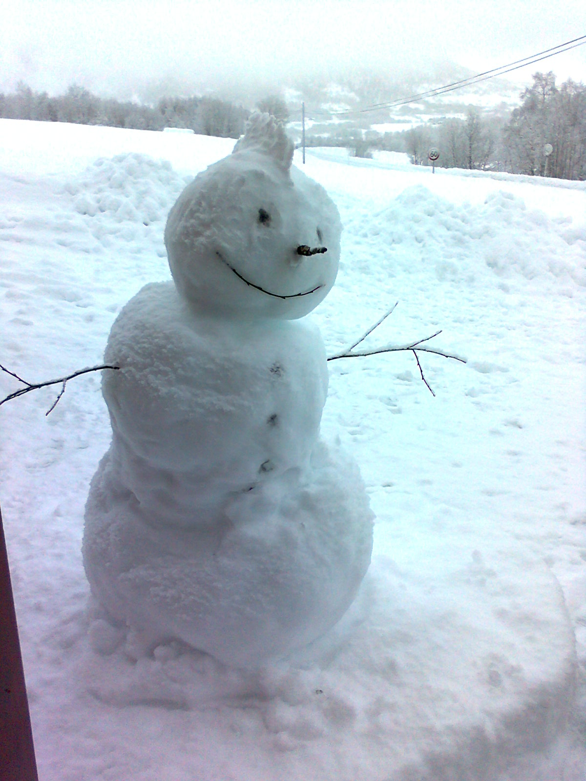 Snømannen Kvist Yo, Myrkdalen Voss