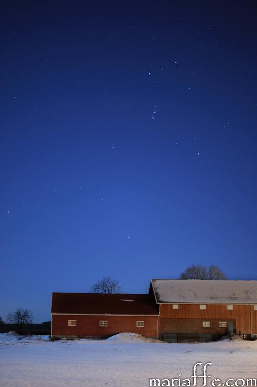stjerneklart-borre-250213