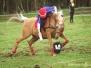 Mounted games NM 2011